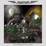 Avatar_Feather_&_Flesh